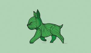 Las métricas siguen siendo más raras que un perro verde en el content marketing
