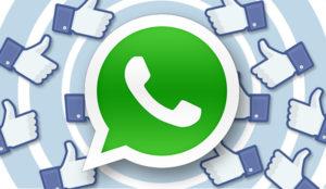 Autoridades españolas revisan los cambios en la privacidad de WhatsApp