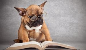 7 libros que harán que las buenas ideas salgan a borbotones de su cabeza