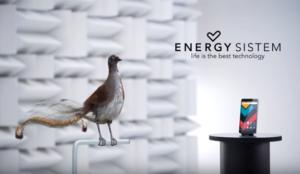 Un ave capaz de imitar cualquier sonido, protagonista de la nueva campaña de Energy System