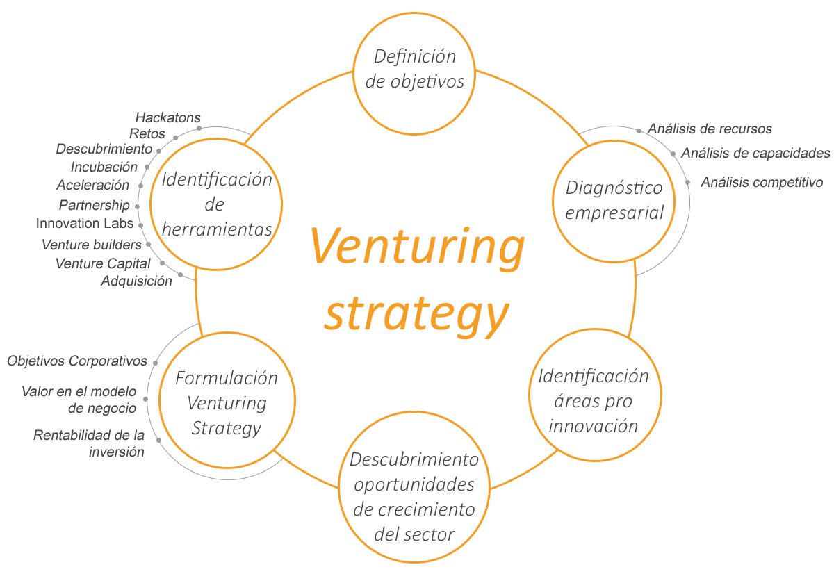 venturingstrategy