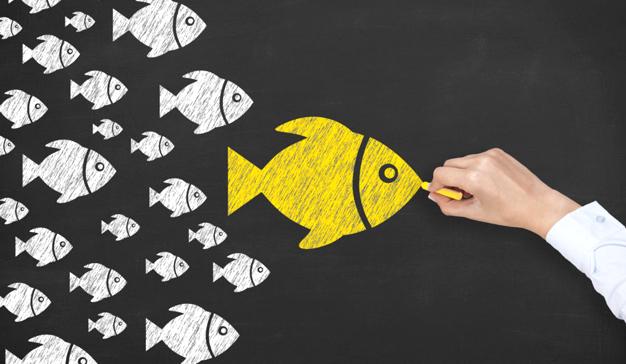 Conozca cómo usar el Storytelling, la Gamificación o Youtube para alcanzar el éxito con los webinars de IEBS