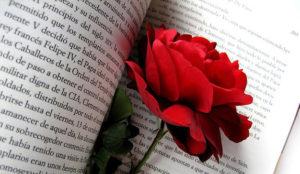 Glovo ofrece enviar rosas por 5€ con motivo de Sant Jordi