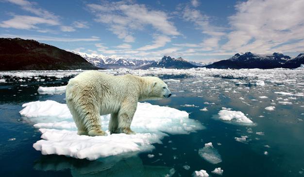 Greenpeace sale a la calle en su última campaña para combatir el cambio climático