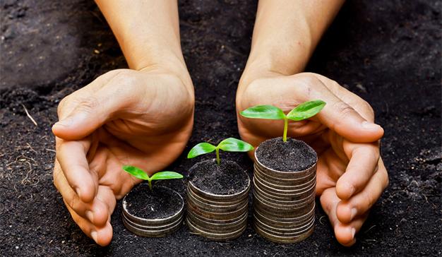 Cómo la competencia puede convertirse en el mejor aliado gracias a la sostenibilidad