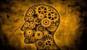 El cerebro tiene todas las respuestas: neurociencia al servicio de la creatividad
