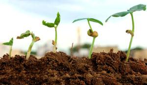 Los resultados trimestrales de Omnicom superan las expectativas de crecimiento