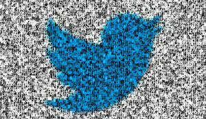 Twitter le declara la guerra (de forma muy efectiva) al abuso y al acoso