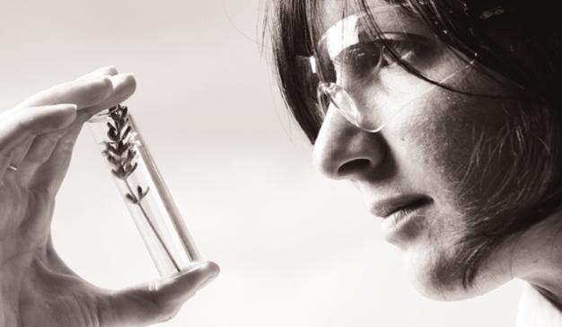 L'Oréal: 20 años impulsando el talento femenino