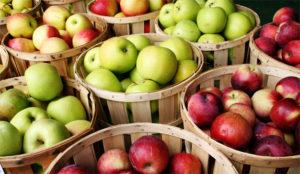 ¿Deberían las frutas y las verduras ser liberadas de las garras del IVA?