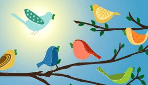 18 perfiles marketeros y creativos que debería seguir en Twitter (sin excusa) el próximo año