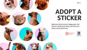 Possible Moscow y Hill's fomentan la adopción de animales con stickers de Telegram