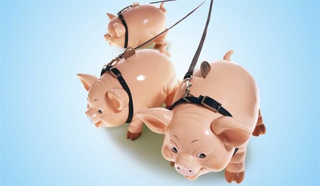 Carpe diem: el consumidor no ahorra para después el dinero que puede gastar ahora
