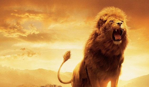 Cannes Lions: rescatar la creatividad de las