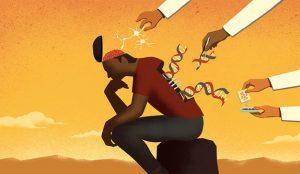Poniendo bajo el microscopio el ADN del CMO moderno