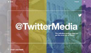Twitter Media: la