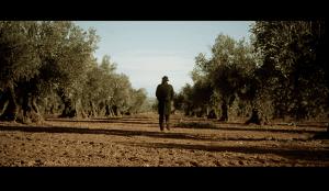La campaña Taste the Truth  promociona los Aceites de Oliva de España en EE.UU.