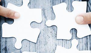 En el camino hacia la transformación digital, los CMOs prefieren ir acompañados