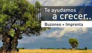 Buzoneofacil se consolida como empresa de referencia Buzoneo en Barcelona y Madrid