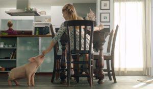 La encantadora amistad porcina de este spot de PETA freirá su corazón en aceite hirviendo