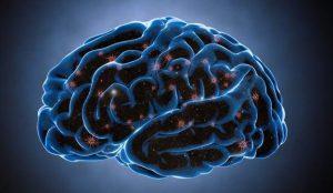 Contraseña cerebral: cuando la ciberseguridad está en la mente