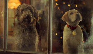 Este encantador spot de Pedigree nos descubre (ladrando) el lado más perruno de la Navidad
