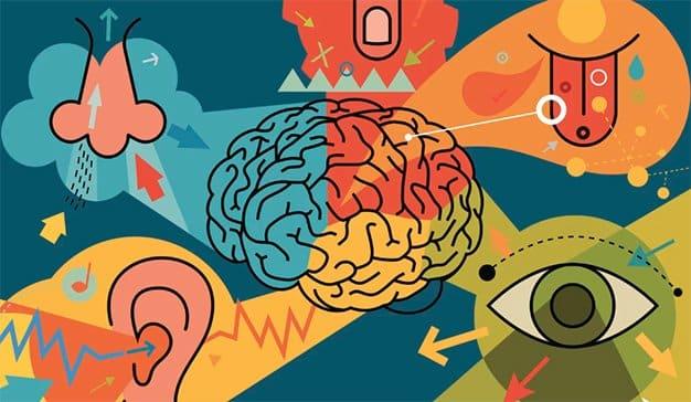 Marcas sensoriales: el futuro en el que la tecnología aprenderá a hablar con nosotros