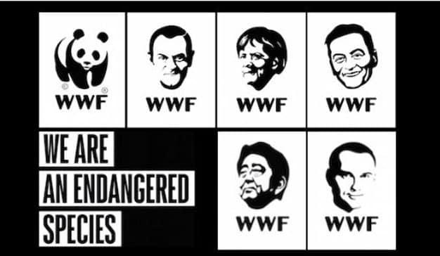 WWF Polonia