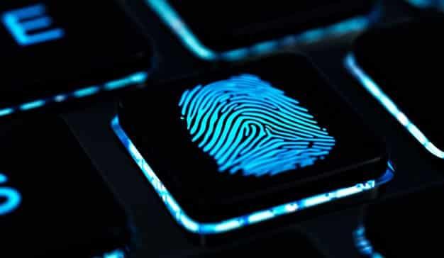 Redes de fraude: así se organiza el cártel de la publicidad digital