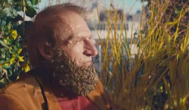 Esta utópica, musical y azucaradísima campaña celebra lo natural en una ciudad idílica