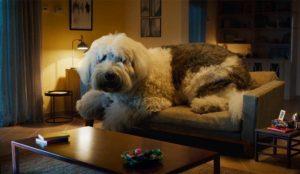 Doug the Dog, el gigante e impredecible perro de Skoda