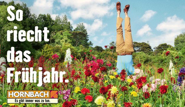 hornbach-heimat-grafica