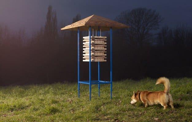 ikea-casas-animales-4