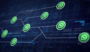 WhatsApp identificará los mensajes reenviados más de cinco veces