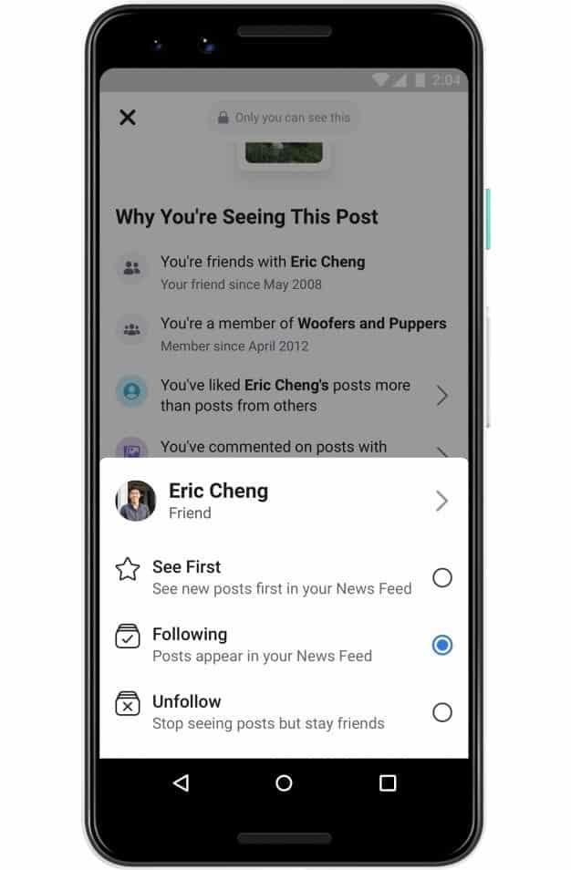 facebook-por-que-estoy-viendo-este-post-3