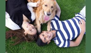 Tendencias y soluciones populares de los amantes de las mascotas este 2019