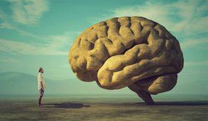 El cerebro, un músculo que puede (y debe)