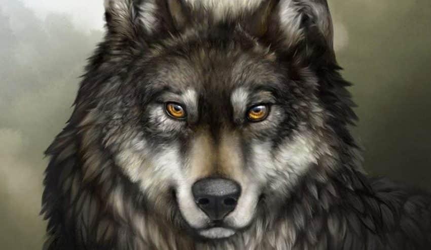 Por qué el clic no es el lobo feroz del cuento publicitario