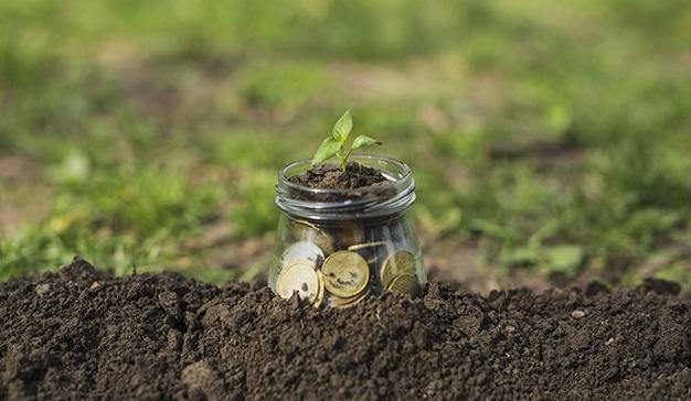 empresas-medioambiente