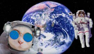 Shutterstock versiona su particular llegada a la Luna en esta campaña