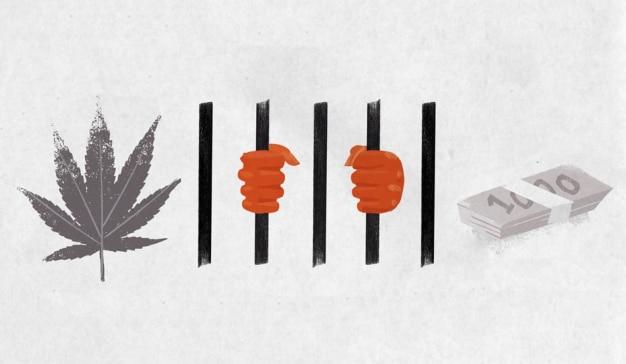 cannabis-nyt-anuncio-esclavitud (1)