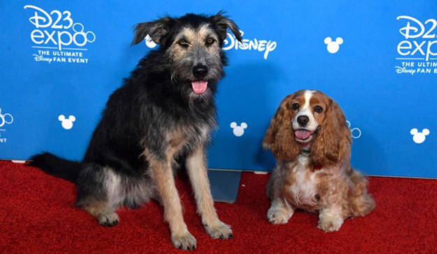 Disney desvela más detalles sobre su plataforma Disney+