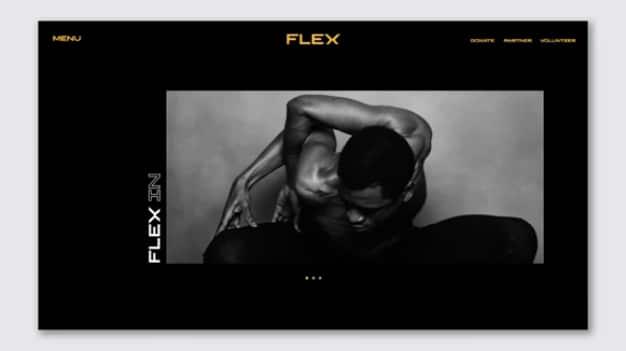 flex-nueva