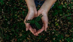 El 57% de los consumidores elegiría marcas sostenibles aunque sean más caras