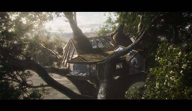 casa leroy campaña árbol