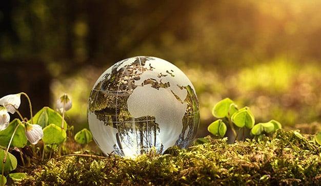 consumo sostenibilidad