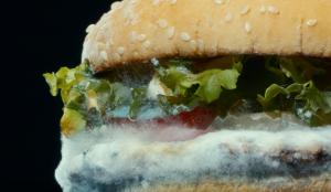 ¿Acierto o error? La arriesgada baza publicitaria de Burger King y su Whopper con moho abre el debate
