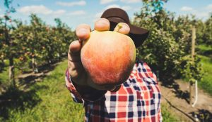 El sector agroalimentario se ve amenazado por la desconfianza del consumidor