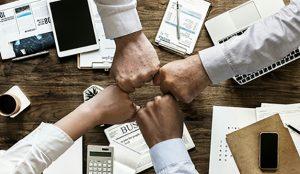Nace Nexo Professional Community la plataforma que conecta el talento con las empresas