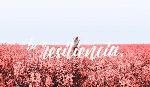 La resiliencia, primera agencia creativa que surge durante el confinamiento